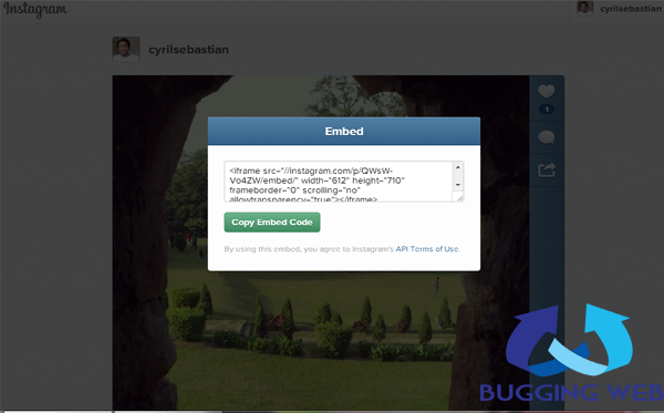 Share Instagram Images on your Site with Web Embed_BuggingWeb