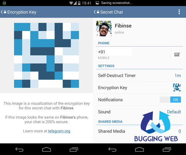 Telegram is a WhatsApp clone but secure free and cloud based_BuggingWeb
